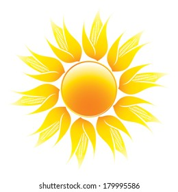 sun with cob rays - cob formed rays of sun - symbolized fertility of soil - isolated on white background
