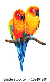 Sun Conure or Sun Parakeet birds are tropical colorful parrots found in Brazil and South America. This vector is of a couple perched on a branch and in love in a cute hand painted oil pastel drawing.