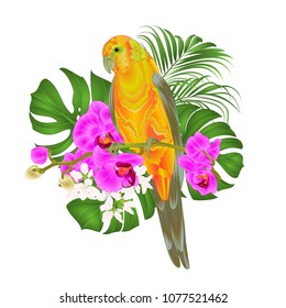 Sun Conure Parrot tropical bird standing on a purple orchid  Phalaenopsis and palm, phiodendronon a white background vector illustration editable hand draw
