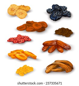 Sun dried fruit healthy nutritive food icons set with apricots raisins prunes figs abstract isolated vector illustration