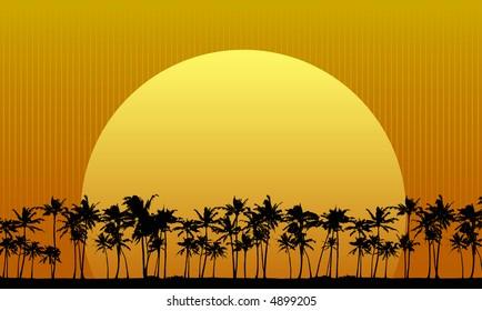 Sun setting behind palm trees