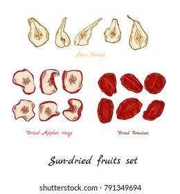 Sun-dried fruit set hand-draw illustration apple tomato pear