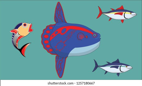 Sunfish and Short Mackerel Fish with blue ocean background