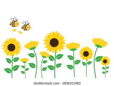 Sunflower field with flying bee cartoon isolated on white background vector illustration.