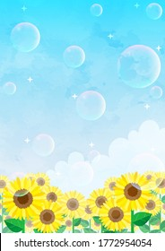 Sunflower field where soap bubbles fly in the blue sky