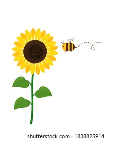 Sunflower and flying bee cartoon icon sign on white background vector illustration.