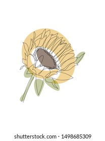 Sunflower linear icon. Sunflower concept stroke symbol design. Thin graphic elements vector illustration, outline pattern on a white background, eps 10.