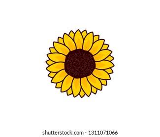 sunflower logo vector