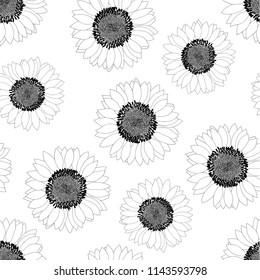 Sunflower Outline Seamless on White Background. Vector Illustration.