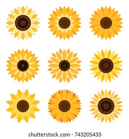 Sunflower plant icons isolated on white background. Vector flat beautiful sunflowers