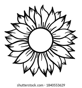 Sunflower print vector illustration for chirt floral decor
