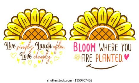 sunflower vector clipart