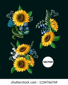 Sunflowers bouquet with wild flower isolated. Vector illustration.