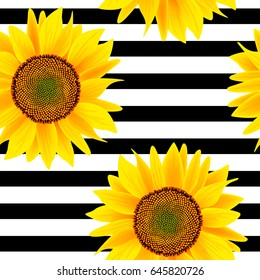 Sunflowers on a striped black and white. Seamless vector pattern
