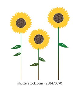 Sunflower's silhouettes, graphic elements for designer