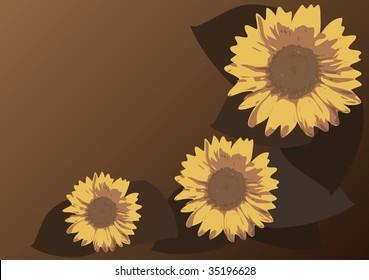 sunflowers vector design