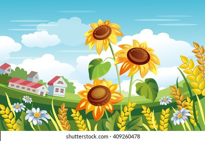 Sunflowers vector illustration. Rural Landscape. Wheat Ears, Daisies, Farmhouse, Green fields. Summertime. Countryside.