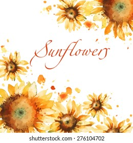 Sunflowers watercolor vector background