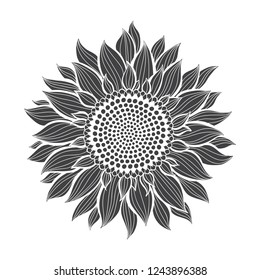 Sunflower.Sketch. Hand draw vector illustration, isolated floral element for design on white background. Silhouette.