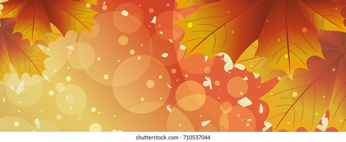 Sunny background with autumn leaves. Vector illustration.