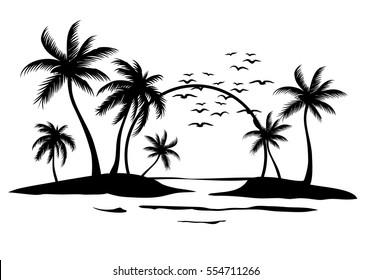 Sunrise between Palms