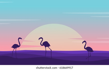 At sunrise flamingo lined on the hill scenery