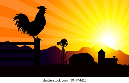 Sunrise & Rooster