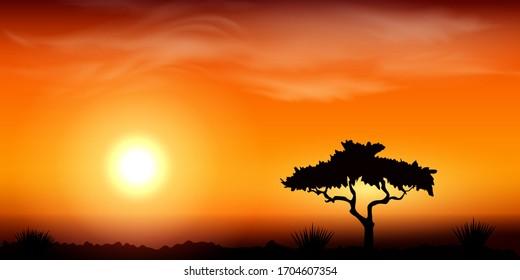 Sunset in Africa, savanna landscape vector illustration. Desert landscape scene.