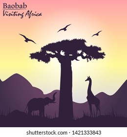 Sunset in africa silhouette with baobab tree, giraffe and elephant