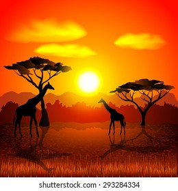 Sunset in african savannah photo realistic vector background