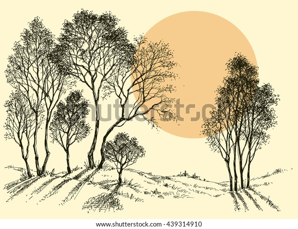 Sunset Forest Trees Wallpaper Landscape Sketch Stock Vector
