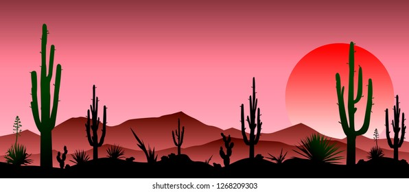 Sunset in the red stony desert.  Silhouettes of stones, cacti and plants. Desert landscape with cacti. The stony desert.