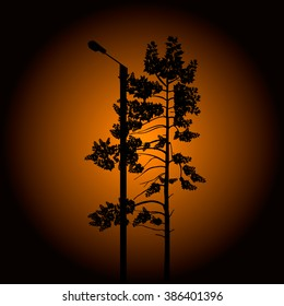 Sunset Silhouette of the tree and electric pole Vector Illustration