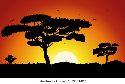 Sunset or Sunrise in Africa with the silhouettes of trees, grass, flying birds, national home and native. The beautiful landscape of the African savannah, can be used for background, backdroop, banner