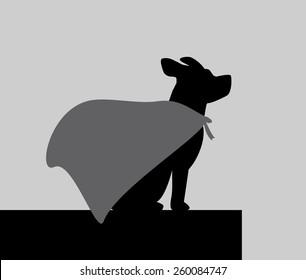 Super Dog on Top Building