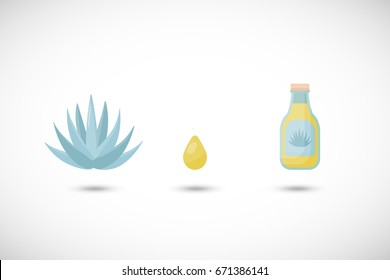 Superfood agave syrup vector flat icons set, Flat design healthy eating objects with round shadow isolated on the white background, cute vector illustration with reflections