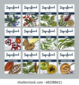 Superfood banners set, full color realistic hand drawn vector sketch illustration. Eco food,  blueberry, cacao, ginger, moringa, goji, lucuma, carob, manuka honey, guarana, kelp, quinoa
