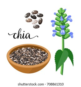 Superfood fruit. Chia seeds and branch with leaves and flowers. Vector illustration cartoon flat icon isolated on white.