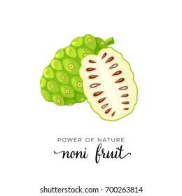 Superfood fruit. Noni fruit. Vector illustration cartoon flat icon isolated on white.