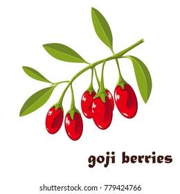Superfood. Goji berries vector illustration.