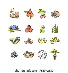 Superfoods line vector icons. Berries,nuts, vegetables fruits and seeds. Organic superfoods for health and diet. Detox and weightloss supplements.