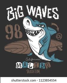 Surf Shark t-shirt print design, vector illustration.