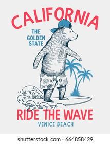 Surfer bear vector illustration. California, Venice beach t-shirt graphic.