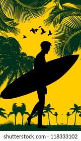 surfer paradise palm beach
