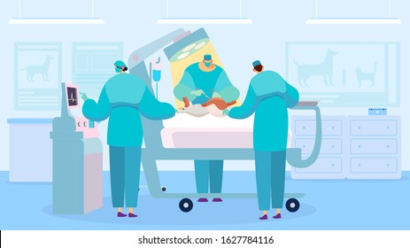 Surgeon performing operation, dog in veterinary clinic, vector illustration. Operation room in animal hospital, vet surgery doctor and nurse. Team of professional veterinarians, cartoon characters