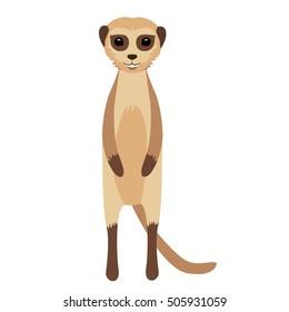 suricata vector