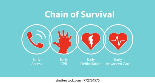 The survival chain. Vector illustration