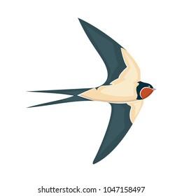 swallow in flight vector illustration style Flat