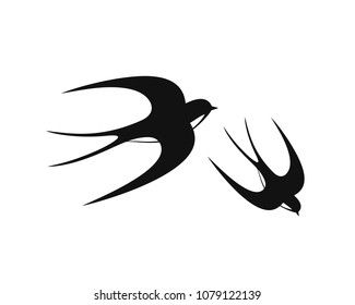 Swallow logo. Isolated swallow on white backgroun. EPS 10. Vector illustration