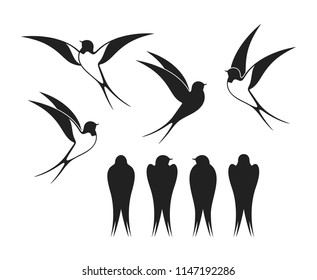 Swallow logo. Isolated swallow on white background